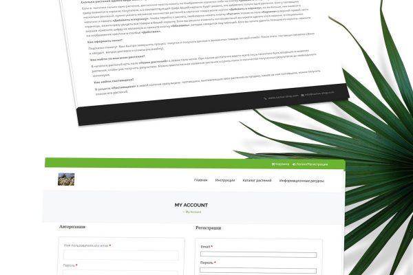 Онлайн магазин Cactus Shop от Speedflow Bulgaria - скрийншот 1