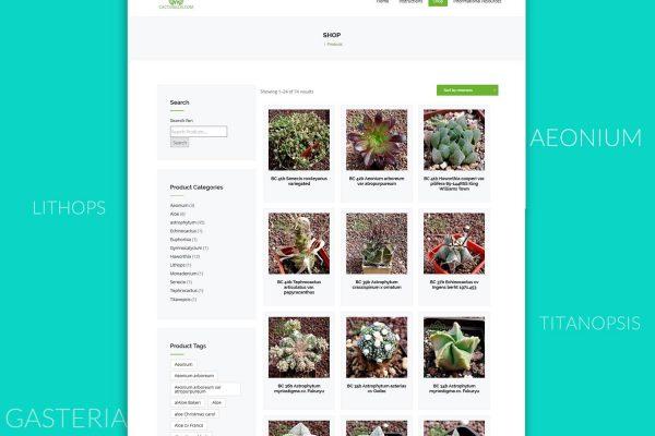 Онлайн магазин Cactusellis от Speedflow - Вашето бизнес решение - скрийншот 2