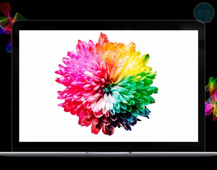 Цветовата психология в уеб дизайна