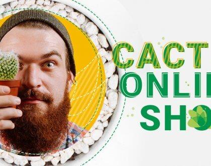 Cactus Online Shop - онлайн магазин за кактуси и сукуленти: от хоби към процъфтяващ бизнес