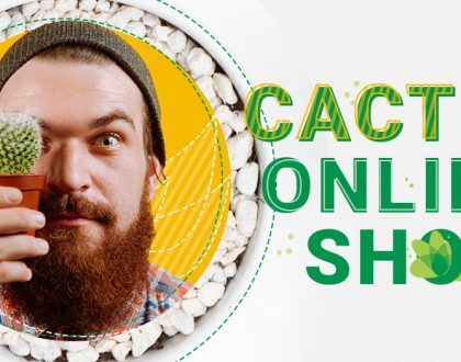 Cactus Online - a hobby that turned into a successful business